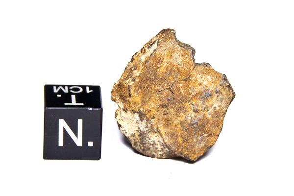 NWA XXX 3.85 gram